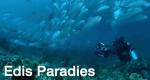 Edis Paradies – Bild: SRF