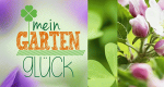 Mein Gartenglück – Bild: Sat.1 Gold