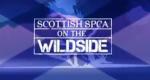 Tierrettung Schottland – Bild: Animal Planet/Screenshot