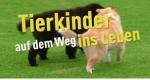 Tierkinder auf dem Weg ins Leben – Bild: HR