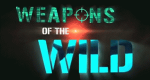 Weapons of the Wild - Waffen im Reich der Tiere – Bild: Wild Fury/NGTI/Screenshot