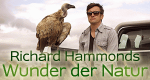 Richard Hammonds Wunder der Natur – Bild: BBC One