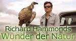 Richard Hammonds Wunder der Natur – Bild: BBC One