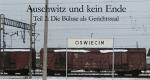 Auschwitz und kein Ende – Bild: tvschoenfilm