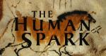 The Human Spark – Bild: PBS
