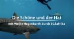 Die Schöne und der Hai – Bild: arte