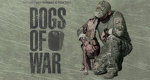 Dogs of War – Hilfe auf vier Pfoten – Bild: A&E Television Networks, LLC.