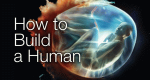 Der konstruierte Mensch – Bild: BBC