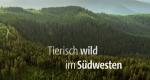Tierisch wild im Südwesten – Bild: SWR