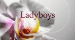 Ladyboys – Bild: Sky Living