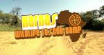 Harnas – Die Buschklinik – Bild: Terra Mater/Screenshot