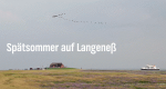 Spätsommer auf Langeneß – Bild: NDR/Christina Georgi & Jens Kösters