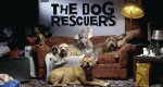 The Dog Rescuers – Bild: Channel 5/Screenshot