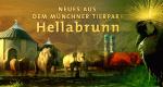Neues aus dem Münchner Tierpark Hellabrunn – Bild: BR