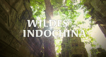 Wildes Indochina – Bild: Discovery International/Arte/ZDF