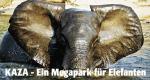 KAZA – Ein Megapark für Elefanten – Bild: arte