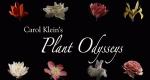 Prachtvolle Pflanzenwelt – Bild: BBC/OSF/PAAN