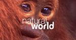 Natural World – Bild: BBC