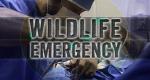 Wilde Tiere im OP – Bild: Animal Planet/Screenshot