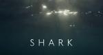 Die Welt der Haie – Bild: BBC One/Screenshot