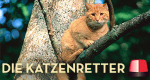 Die Katzenretter – Einsatz in der Baumkrone – Bild: Animal Planet/Screenshot