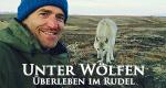 Unter Wölfen – Überleben im Rudel – Bild: BBC/Gordon Buchanan
