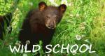 Wild School – Waisenkinder im Tierreich – Bild: SRF