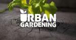 Urban Gardening – Bild: SRF