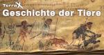 Geschichte der Tiere – Bild: ZDF/Jasper Engel