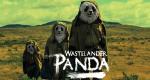 Wastelander Panda – Bild: ABC iview