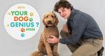 Dein Hund: Das Genie – Bild: Nat Geo Wild