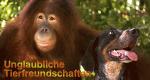 Unglaubliche Tierfreundschaften – Bild: BBC/Oxford Scientific Films