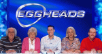 Eggheads – Bild: BBC