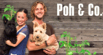 Poh & Co. – Bild: SBS One