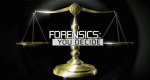 Forensics: You Decide – Bild: Investigation Discovery/Screenshot