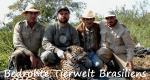 Bedrohte Tierwelt Brasiliens – Bild: Grifa Filmes