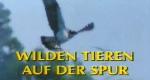 Wilden Tieren auf der Spur – Bild: ZDF