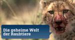 Die geheime Welt der Raubtiere – Bild: ZDF