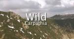 Wilde Karpaten – Bild: Travel Channel