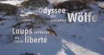 Die Odyssee der einsamen Wölfe – Bild: arte/Ifage Filmproduktion