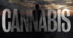 Cannabis – Bild: arte/Lucia Faraig