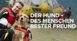 Der Hund - Des Menschen bester Freund – Bild: Discovery Communications