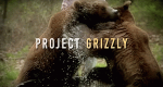 Das Grizzly-Projekt – Bild: Animal Planet/Screenshot
