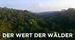 Der Wert der Wälder – Bild: ARTE France/Docside/ZED