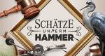 Schätze unterm Hammer – Ein Auktionator schlägt zu – Bild: kabel eins