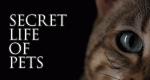 Das geheime Leben unserer Haustiere – Bild: Channel 5/A Brand Apart