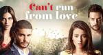 Can't Run From Love – Bild: Star TV/Netflix