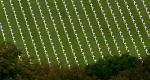 France-Germany: A Shared History – Bild: arte/Point du Jour
