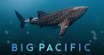 Big Pacific – Bild: NHNZ/PBS/CCTV9/ZDF Enterprises/Discovery International