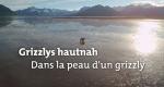 Grizzlys hautnah – Bild: arte/BR